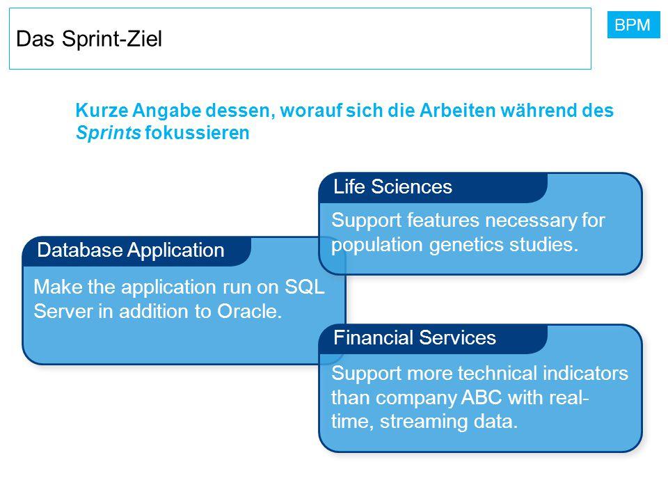 BPM Kurze Angabe dessen, worauf sich die Arbeiten während des Sprints fokussieren Database Application Financial Services Life Sciences Support featur