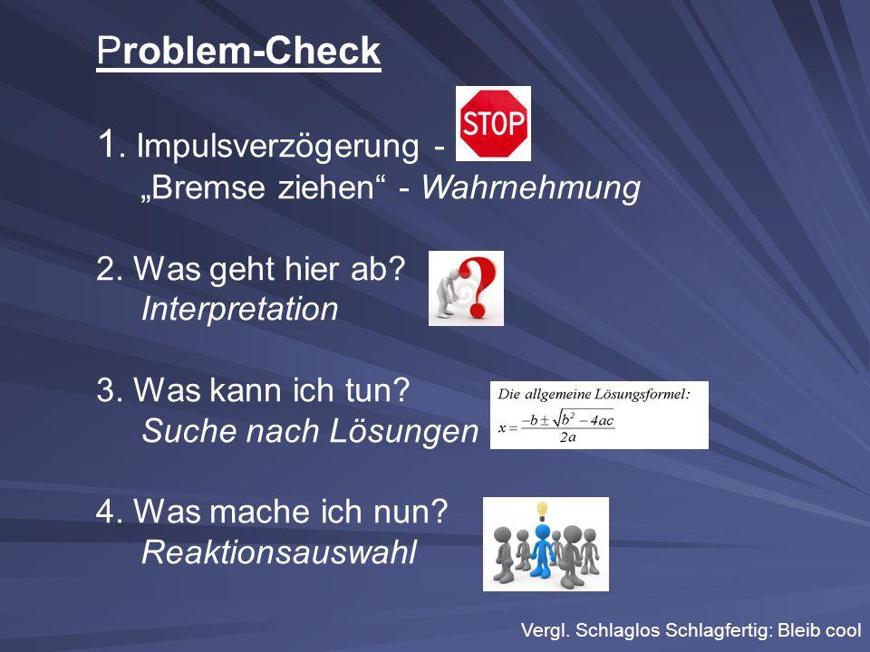 """Problem-Check 1.Impulsverzögerung - """"Bremse ziehen - Wahrnehmung 2."""