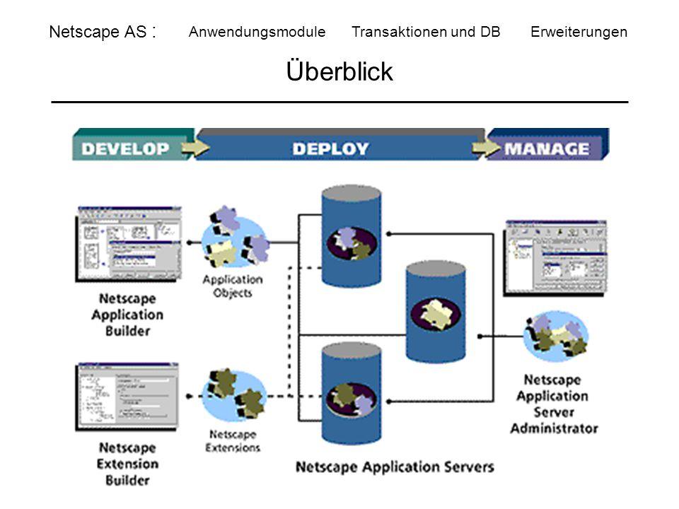 Überblick Netscape AS : Anwendungsmodule Transaktionen und DBErweiterungen