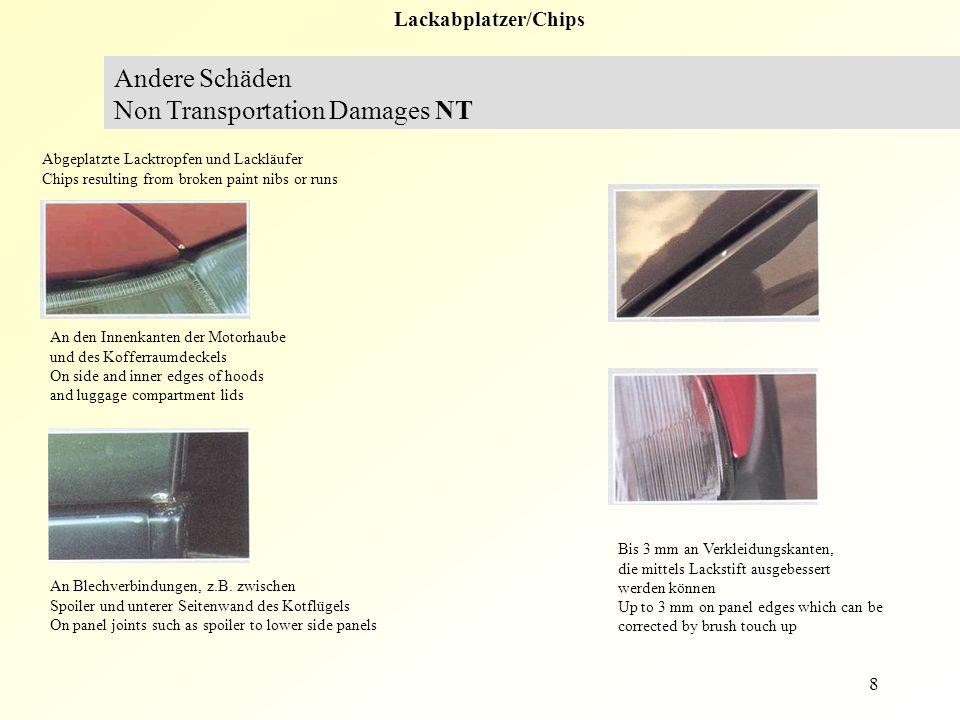 8 Lackabplatzer/Chips Andere Schäden Non Transportation Damages NT Abgeplatzte Lacktropfen und Lackläufer Chips resulting from broken paint nibs or ru