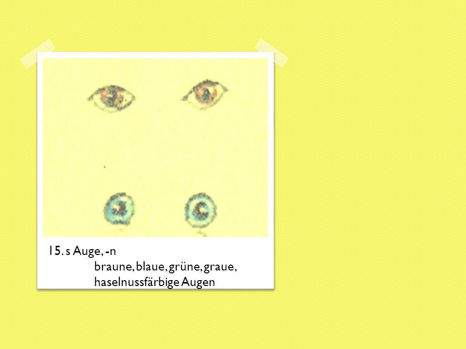 15. s Auge, -n braune, blaue, grüne, graue, haselnussfärbige Augen