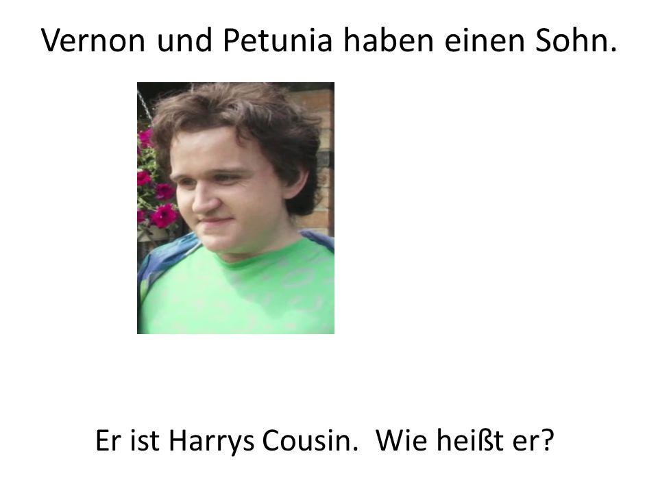 Vernon und Petunia haben einen Sohn. Er ist Harrys Cousin. Wie heißt er?