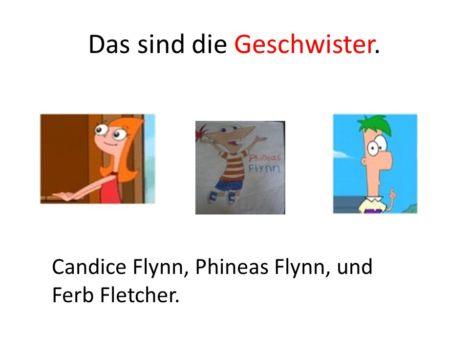 Das sind die Geschwister. Candice Flynn, Phineas Flynn, und Ferb Fletcher.