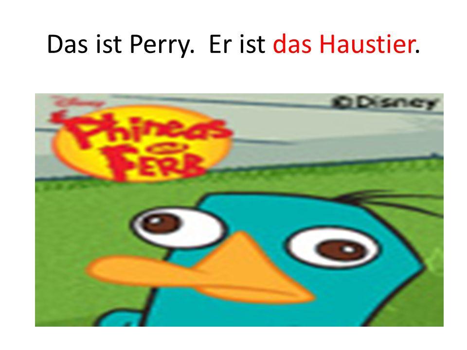 Das ist Perry. Er ist das Haustier.