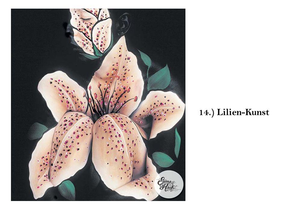 14.) Lilien-Kunst