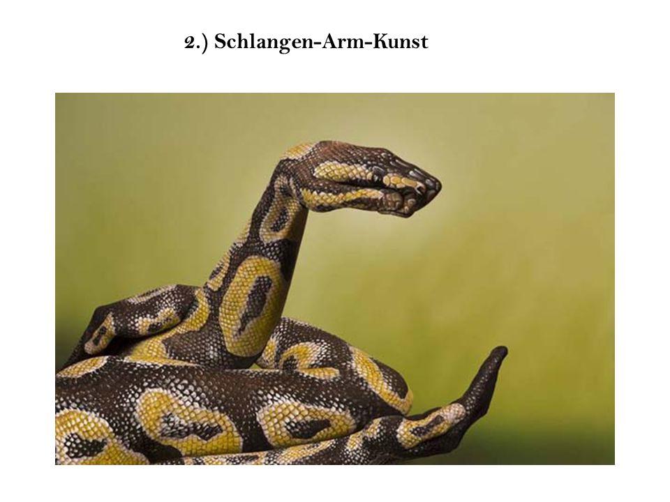 2.) Schlangen-Arm-Kunst