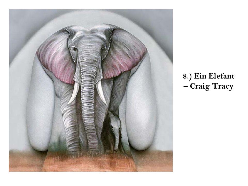 8.) Ein Elefant – Craig Tracy