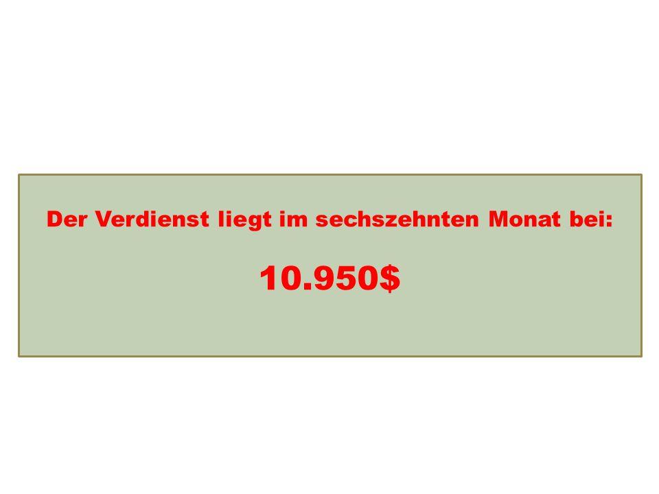 Einkommensentwicklung Der Verdienst liegt im sechszehnten Monat bei: 10.950$