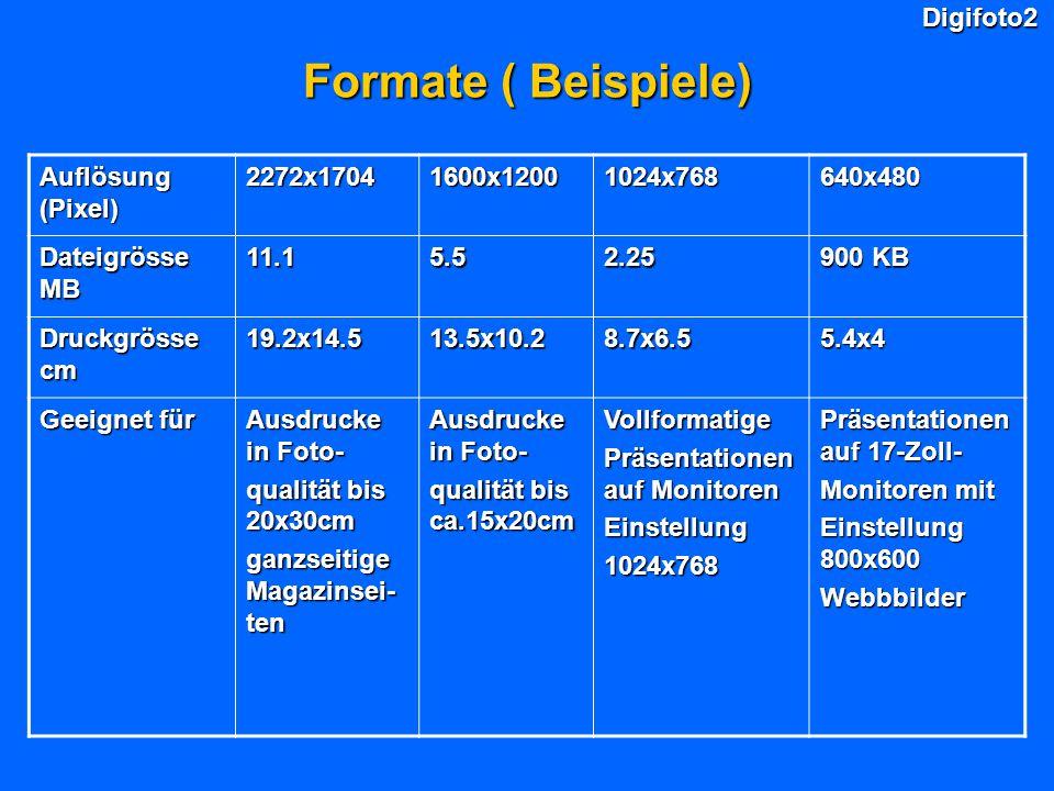 Digifoto2 Formate ( Beispiele) Auflösung (Pixel) 2272x17041600x12001024x768640x480 Dateigrösse MB 11.15.52.25 900 KB Druckgrösse cm 19.2x14.513.5x10.28.7x6.55.4x4 Geeignet für Ausdrucke in Foto- qualität bis 20x30cm ganzseitige Magazinsei- ten Ausdrucke in Foto- qualität bis ca.15x20cm Vollformatige Präsentationen auf Monitoren Einstellung1024x768 Präsentationen auf 17-Zoll- Monitoren mit Einstellung 800x600 Webbbilder