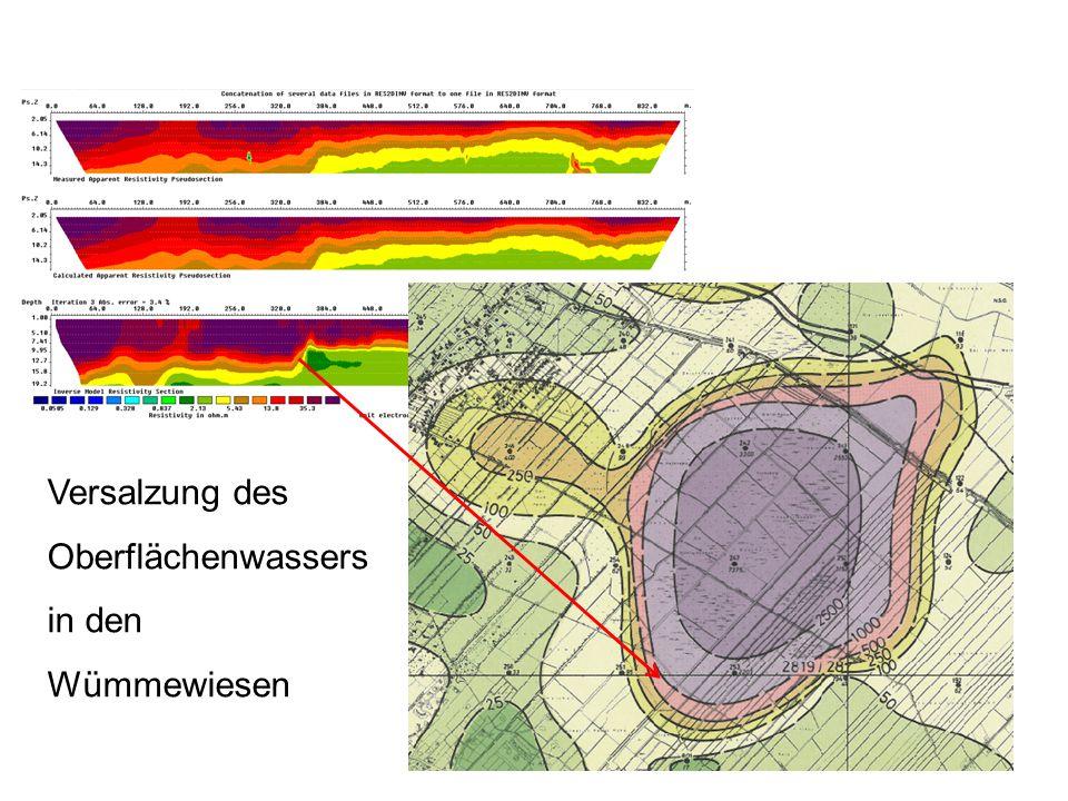 Versalzung des Oberflächenwassers in den Wümmewiesen