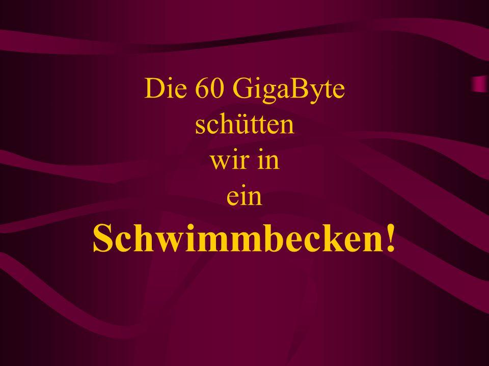Die 60 GigaByte schütten wir in ein Schwimmbecken!