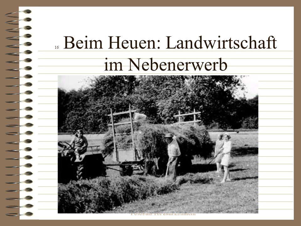 Fotos als Tor zum Erinnern 16 Beim Heuen: Landwirtschaft im Nebenerwerb