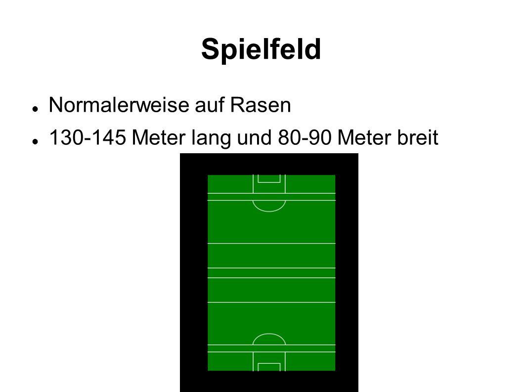 Spielfeld Normalerweise auf Rasen 130-145 Meter lang und 80-90 Meter breit