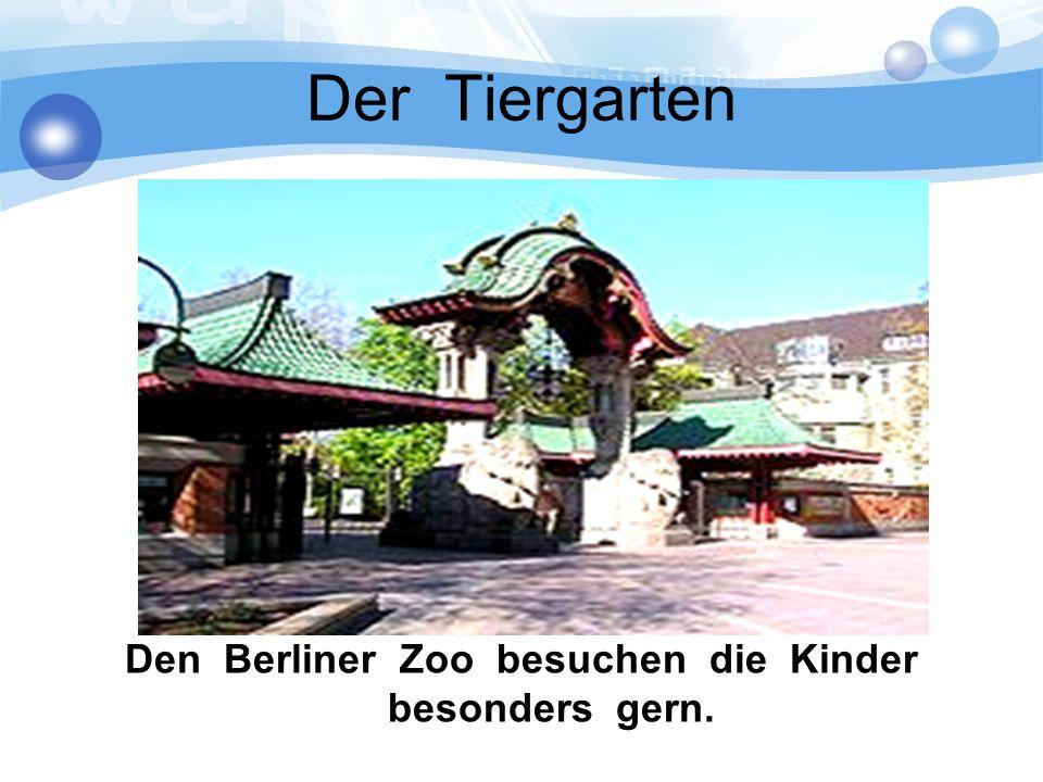 Der Tiergarten Den Berliner Zoo besuchen die Kinder besonders gern.