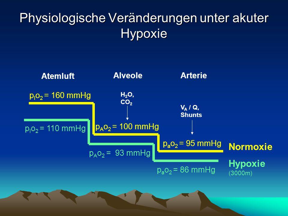 Physiologische Veränderungen unter akuter Hypoxie p I o 2 = 160 mmHg p A o 2 = 100 mmHg p a o 2 = 95 mmHg H 2 O, CO 2 V A / Q, Shunts p I o 2 = 110 mm