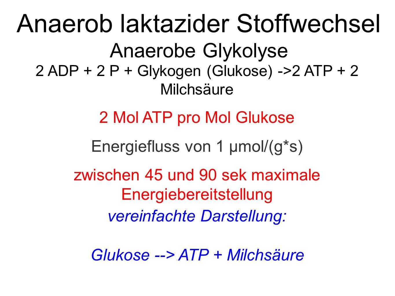 Anaerob laktazider Stoffwechsel Anaerobe Glykolyse 2 ADP + 2 P + Glykogen (Glukose) ->2 ATP + 2 Milchsäure 2 Mol ATP pro Mol Glukose Energiefluss von 1 μmol/(g*s) zwischen 45 und 90 sek maximale Energiebereitstellung vereinfachte Darstellung: Glukose --> ATP + Milchsäure