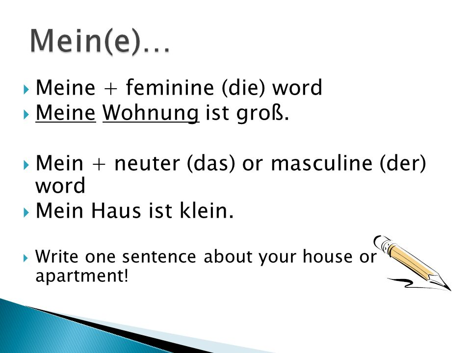  Meine + feminine (die) word  Meine Wohnung ist groß.  Mein + neuter (das) or masculine (der) word  Mein Haus ist klein.  Write one sentence abou