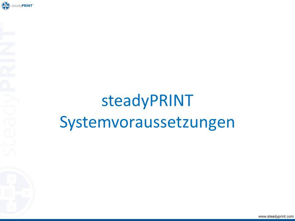 steadyPRINT Systemvoraussetzungen