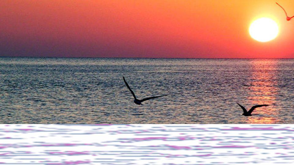 Die kleinste Bewegung ist für die ganze Natur von Bedeutung; das ganze Meer verändert sich, wenn ein Stein hineingeworfen wird. Blaise Pascal,