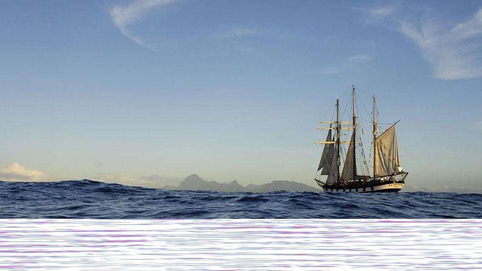 Zwischen Können und Tun liegt ein Meer und auf seinem Grunde gar oft die gescheiterte Willenskraft. Marie von Ebner-Eschenbach