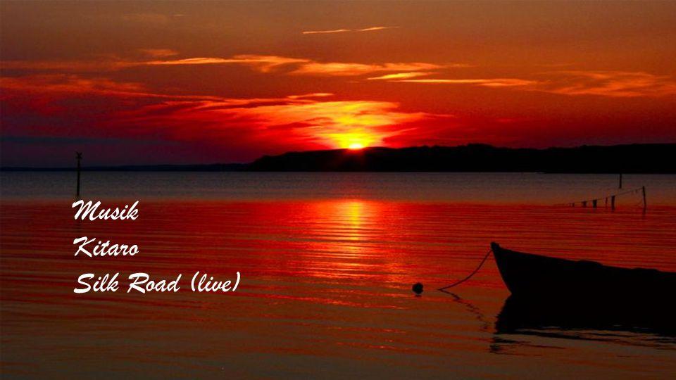 Nach dem Sternenhimmel ist das Größte und Schönste, was Gott erschaffen hat, das Meer. Adalbert Stifter