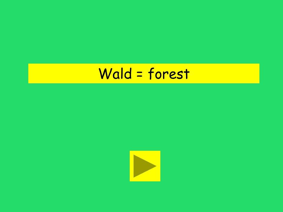 Eines Tages ging sie in den Wald. wall foresttheater