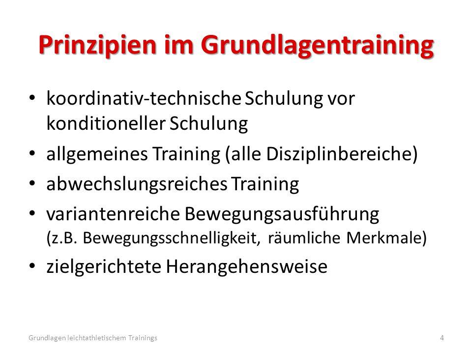Prinzipien im Grundlagentraining koordinativ-technische Schulung vor konditioneller Schulung allgemeines Training (alle Disziplinbereiche) abwechslung
