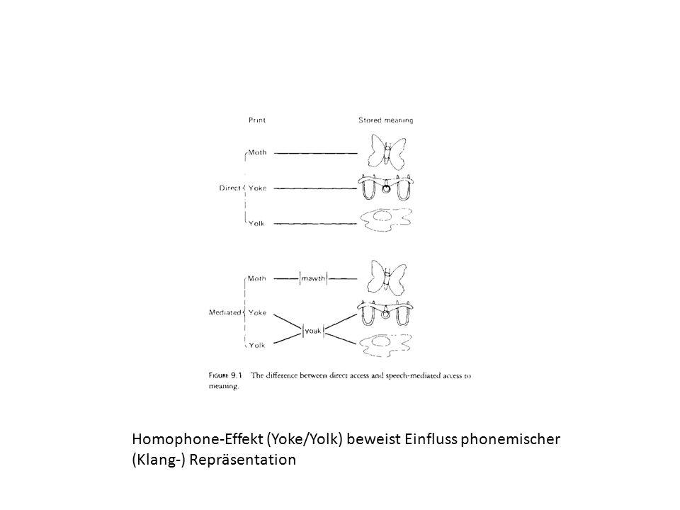 Homophone-Effekt (Yoke/Yolk) beweist Einfluss phonemischer (Klang-) Repräsentation