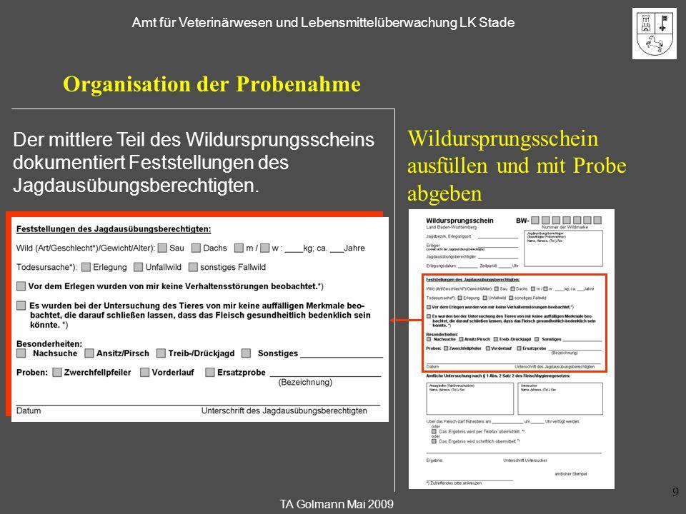 TA Golmann Mai 2009 Amt für Veterinärwesen und Lebensmittelüberwachung LK Stade 9 Organisation der Probenahme Wildursprungsschein ausfüllen und mit Pr