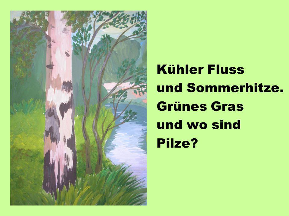 Kühler Fluss und Sommerhitze. Grünes Gras und wo sind Pilze