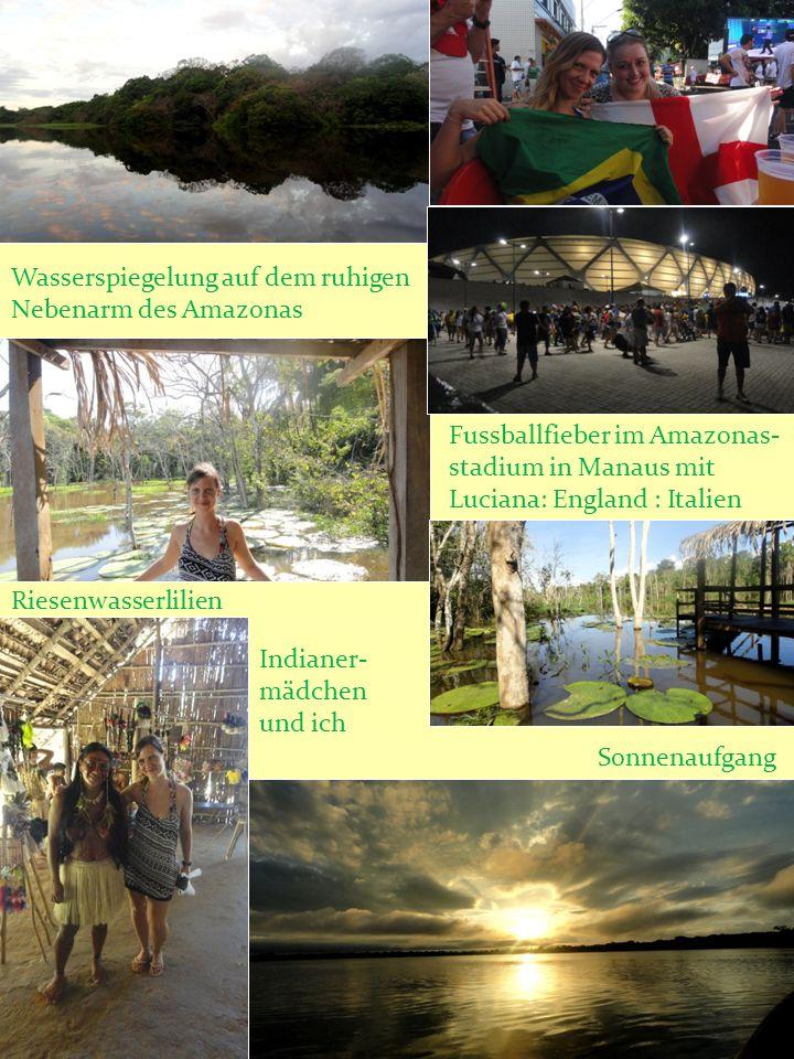 Wasserspiegelung auf dem ruhigen Nebenarm des Amazonas Fussballfieber im Amazonas- stadium in Manaus mit Luciana: England : Italien Riesenwasserlilien