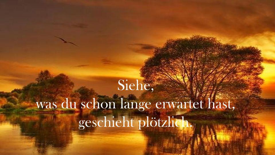 Wenn du jetzt müde bist, betrachte nur die Ruhe des Sonneuntergangs, ohne Träume und Erwartungen...