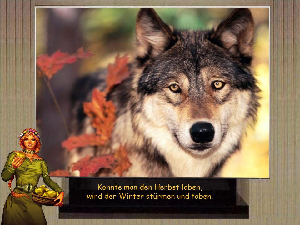 Je trockener der Herbst - je kälter der Winter, je besser das Jahr.