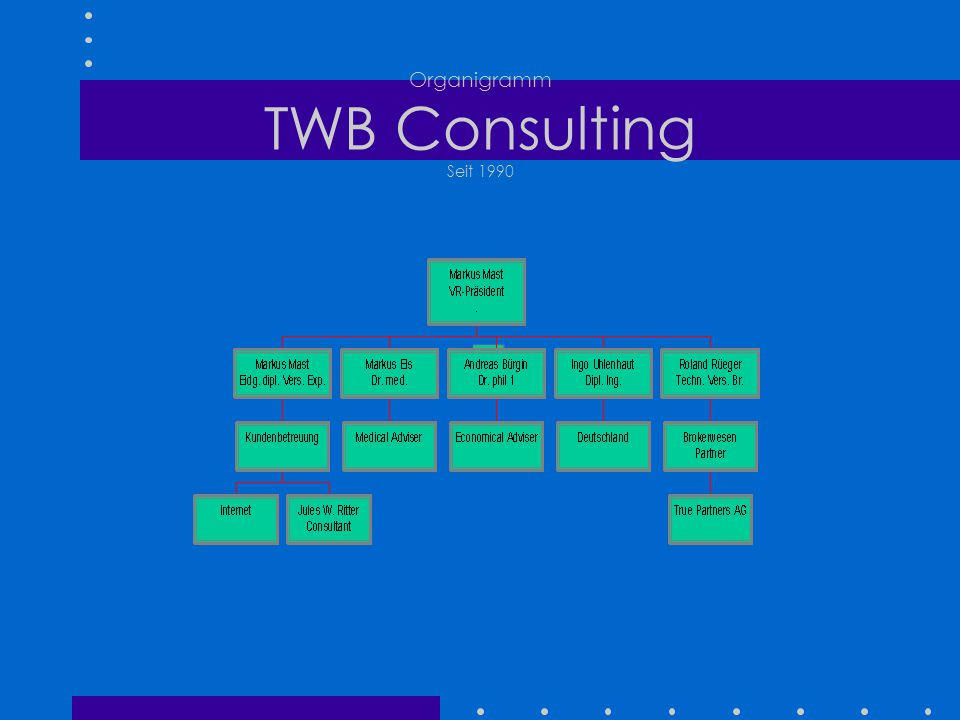 Organigramm TWB Consulting Seit 1990