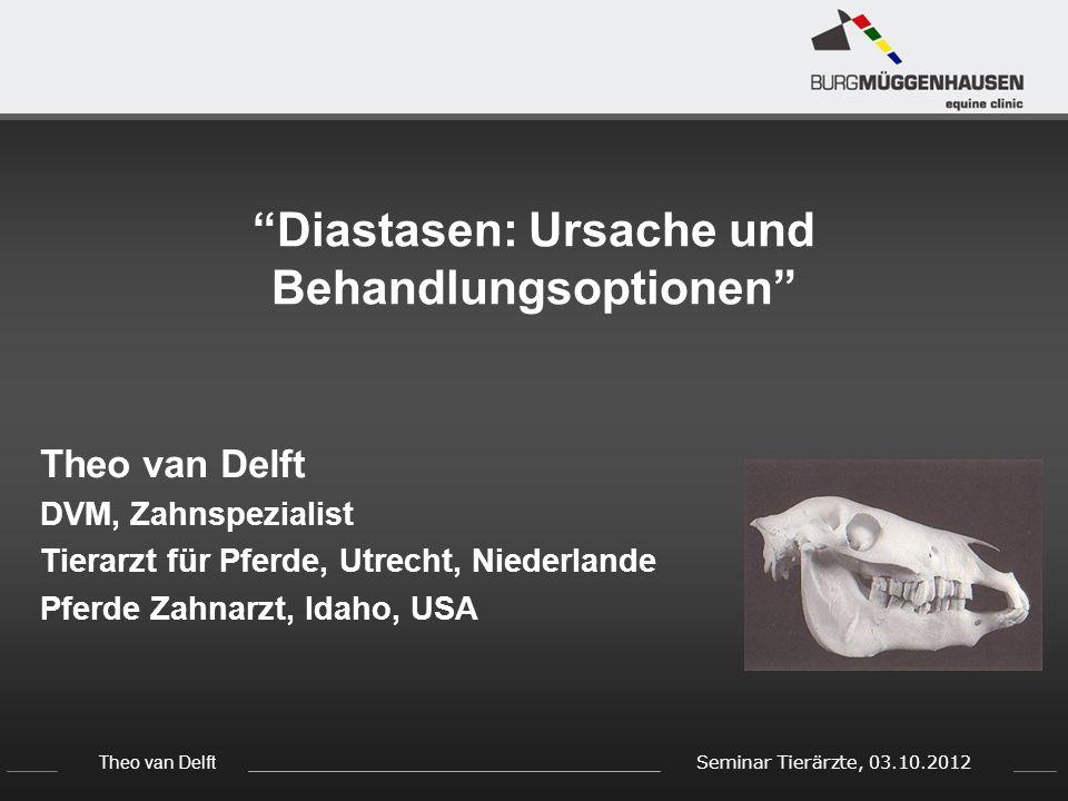 Theo van Delft Seminar Tierärzte, 03.10.2012 Diastasen: Ursache und Behandlungsoptionen Theo van Delft DVM, Zahnspezialist Tierarzt für Pferde, Utrecht, Niederlande Pferde Zahnarzt, Idaho, USA