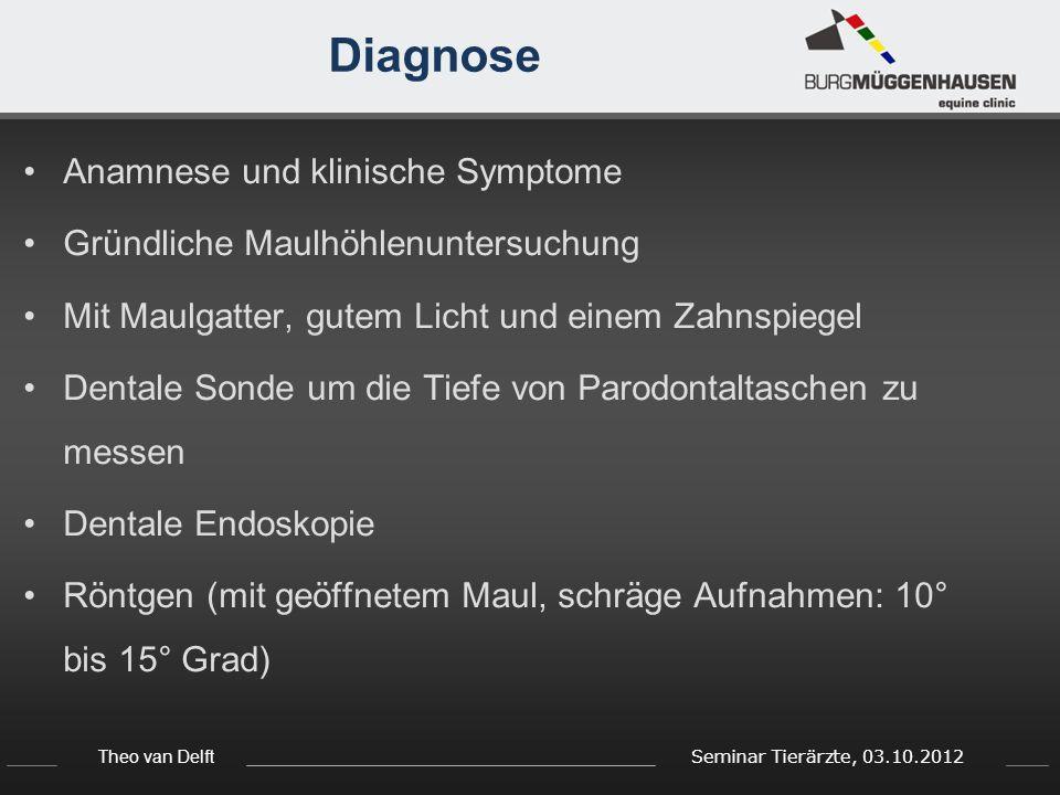 Theo van Delft Seminar Tierärzte, 03.10.2012 Diagnose Anamnese und klinische Symptome Gründliche Maulhöhlenuntersuchung Mit Maulgatter, gutem Licht un