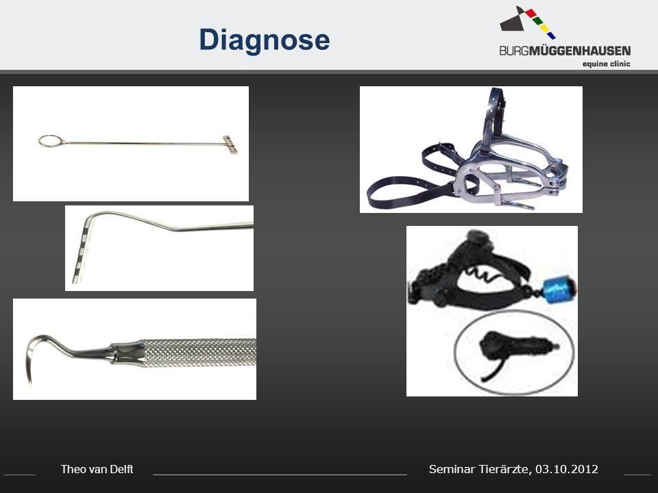 Theo van Delft Seminar Tierärzte, 03.10.2012 Diagnose