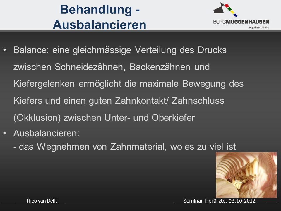 Theo van Delft Seminar Tierärzte, 03.10.2012 Behandlung - Ausbalancieren Balance: eine gleichmässige Verteilung des Drucks zwischen Schneidezähnen, Ba