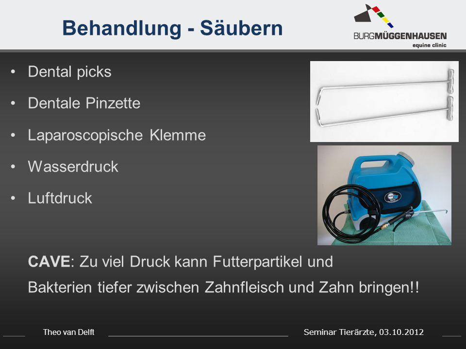 Theo van Delft Seminar Tierärzte, 03.10.2012 Behandlung - Säubern Dental picks Dentale Pinzette Laparoscopische Klemme Wasserdruck Luftdruck CAVE: Zu