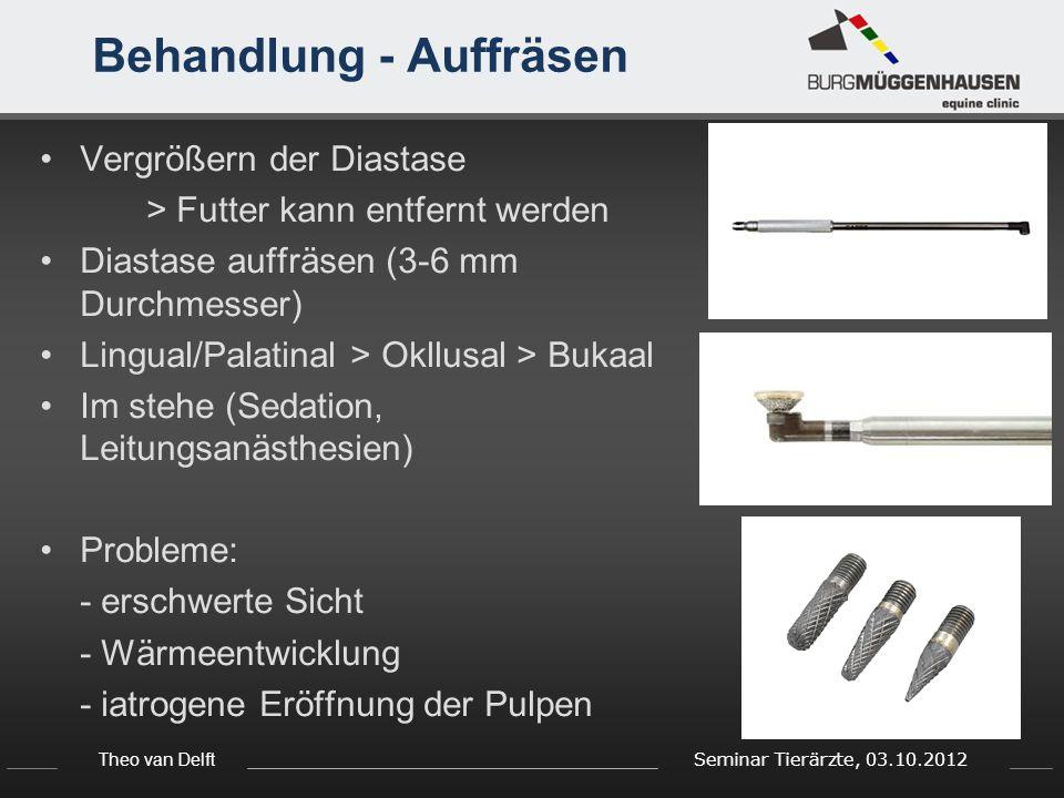 Theo van Delft Seminar Tierärzte, 03.10.2012 Behandlung - Auffräsen Vergrößern der Diastase > Futter kann entfernt werden Diastase auffräsen (3-6 mm D
