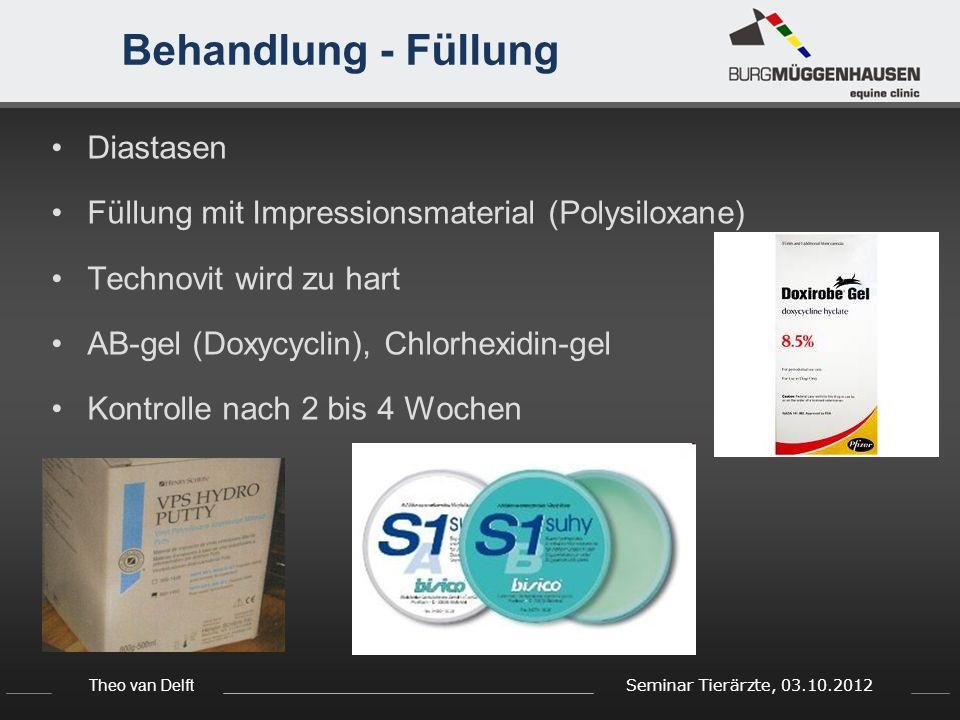 Theo van Delft Seminar Tierärzte, 03.10.2012 Behandlung - Füllung Diastasen Füllung mit Impressionsmaterial (Polysiloxane) Technovit wird zu hart AB-gel (Doxycyclin), Chlorhexidin-gel Kontrolle nach 2 bis 4 Wochen