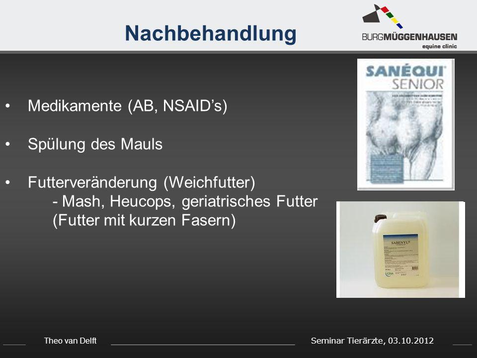 Theo van Delft Seminar Tierärzte, 03.10.2012 Nachbehandlung Medikamente (AB, NSAID's) Spülung des Mauls Futterveränderung (Weichfutter) - Mash, Heucop