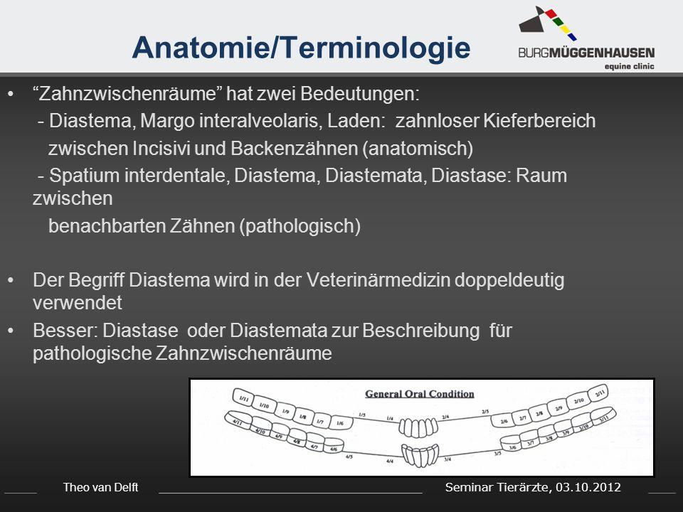 Theo van Delft Seminar Tierärzte, 03.10.2012 Ätiologie - Diastasen Diastasen sieht man häufiger zwischen Backenzähnen aber manchmal auch zwischen Schneidezähnen Primäre Diastase > angeboren/ entwicklungsbedingt - durch evolutionäre Veränderungen der Kieferknochenform > mehr Raum zwischen den Backenzähnen (Curvature of Spee) - häufiger in jungen Pferden Sekundäre Diastasen > erworben - durch Dysbalance zwischen Zähnen werden die Zähne des Gegenkiefers auseinander gedrückt - häufiger in älteren Pferden