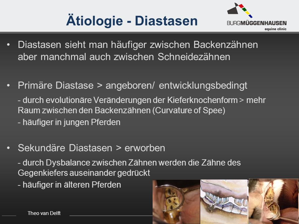 Theo van Delft Seminar Tierärzte, 03.10.2012 Ätiologie - Diastasen Offene Diastase - Futter das eintritt kann auch wieder austreten Geschlossene/Ventil Diastase - haben eine dreieckige Form, die zur Kaufläche enger wird - Futter das eintritt kann nicht gut wieder austreten - Futterpartikel werden immer tiefer eingedrückt