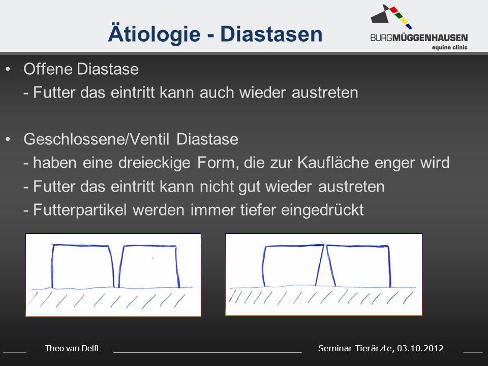 Theo van Delft Seminar Tierärzte, 03.10.2012 Behandlung - Ausbalancieren Ausbalancieren von Backen- und Schneidezähnen Mit Handraspel bzw.