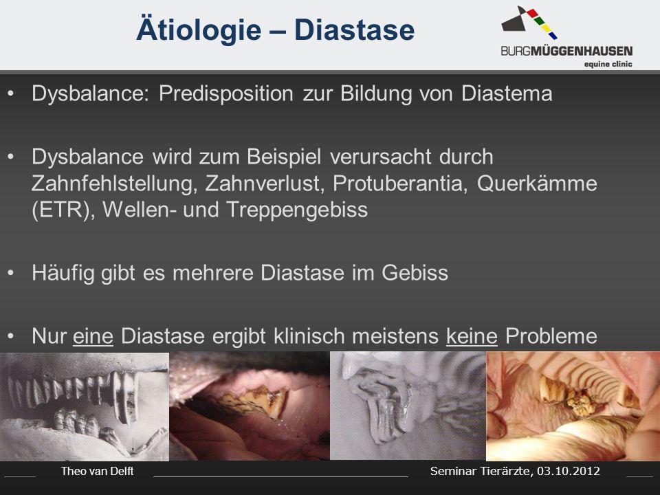 Theo van Delft Seminar Tierärzte, 03.10.2012 Ätiologie – Diastase Dysbalance: Predisposition zur Bildung von Diastema Dysbalance wird zum Beispiel ver