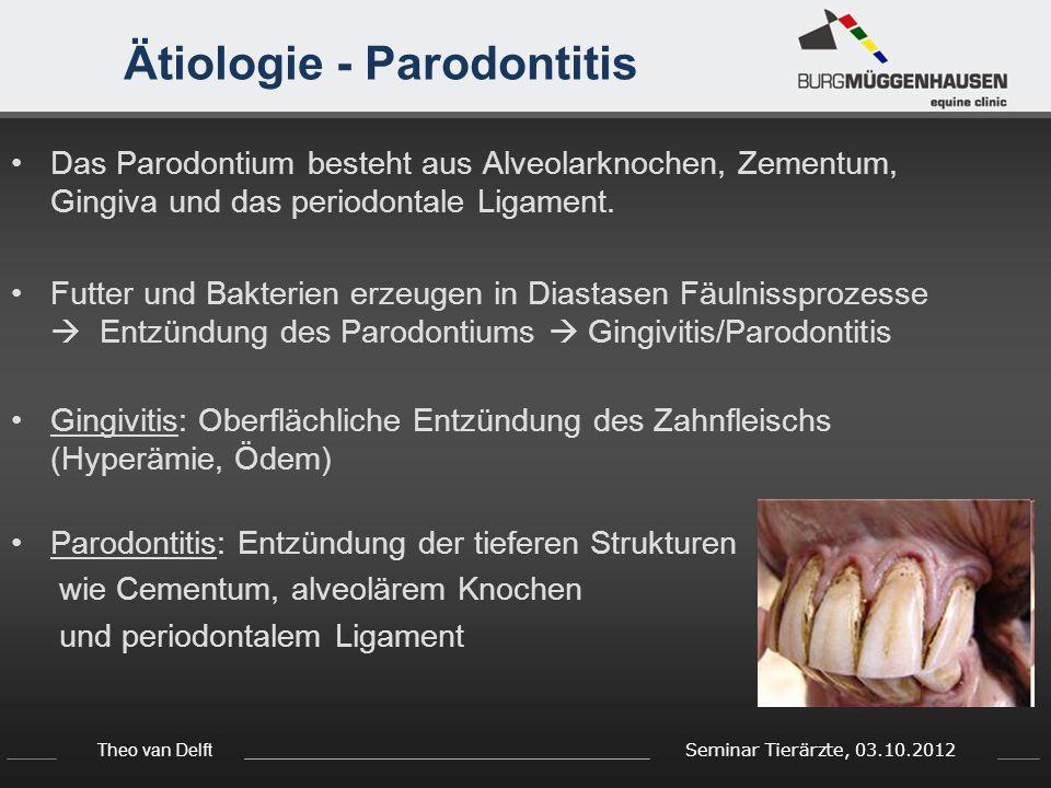 Theo van Delft Seminar Tierärzte, 03.10.2012 Ätiologie - Parodontitis Das Parodontium besteht aus Alveolarknochen, Zementum, Gingiva und das periodont