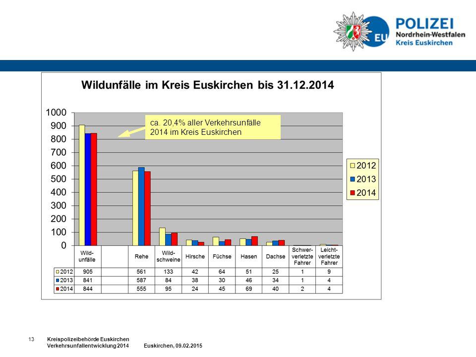 ca. 20,4% aller Verkehrsunfälle 2014 im Kreis Euskirchen 13Kreispolizeibehörde Euskirchen Verkehrsunfallentwicklung 2014 Euskirchen, 09.02.2015