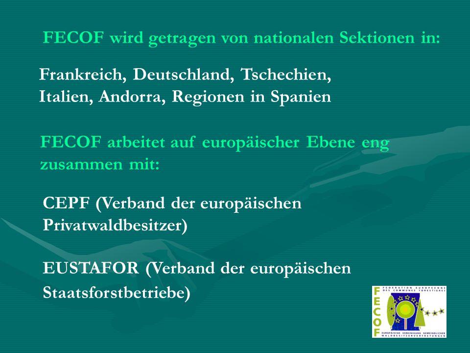 FECOF wird getragen von nationalen Sektionen in: Frankreich, Deutschland, Tschechien, Italien, Andorra, Regionen in Spanien FECOF arbeitet auf europäischer Ebene eng zusammen mit: CEPF (Verband der europäischen Privatwaldbesitzer) EUSTAFOR (Verband der europäischen Staatsforstbetriebe)