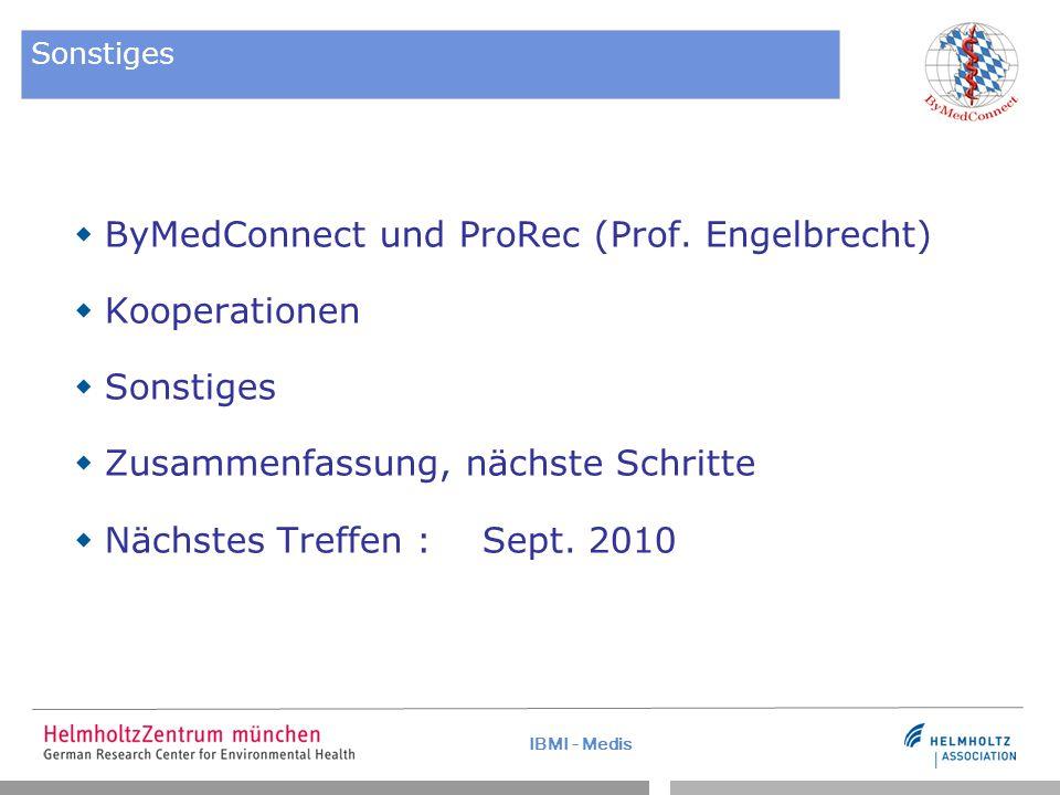 IBMI - Medis Sonstiges  ByMedConnect und ProRec (Prof. Engelbrecht)  Kooperationen  Sonstiges  Zusammenfassung, nächste Schritte  Nächstes Treffe